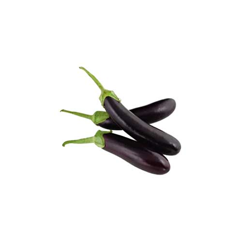 Brinjal long Shape aninnfnf